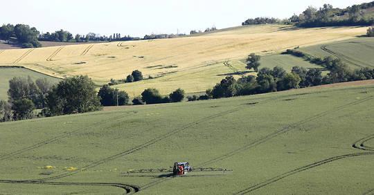 La France franchit « un cap » dans l'agriculture biologique