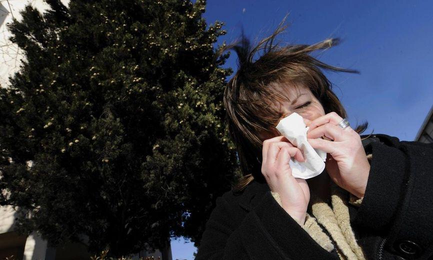 Allergies : les Bouches du Rhône et le Vaucluse en alerte rouge